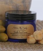 Nurture My Body Organic Gentle Face Cream for Normal to Oily Skin