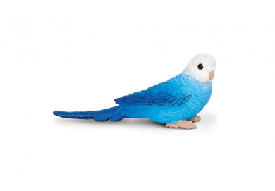 Wings of the World: Blue Budgie