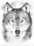 Wolf-SketchingByNumber