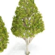 5pcs 6.5cm - 13cm White Poplar Model Trees - Light Green Leaves