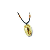 Ed Speldy East PYB1101 Real Bug Necklace-Scorpion