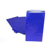 Blue Paper Treat Bags : package of 12