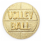 Gold Volleyball Chenille Pin