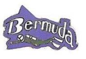 New Collectable Bermuda Scuba Diving Hat & Lapel Pin
