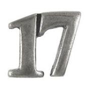 17 Lapel Pin