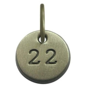 1.3cm Days to Remember Number 22 Embossed Collectible Charm
