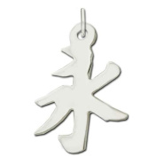 "Sterling Silver ""Eternity"" Kanji Chinese Symbol Charm"
