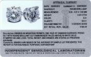 1/4 Ctw Diamond Studs GH/SI2-I1 14K White Gold