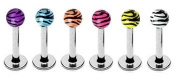 6 Zebra Animal Tiger Print Unique balls Labret Monroe lip tragus piercing bar Ring 16g, 5/16""