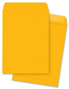 Business Source BSN42101 Catalog Envelopes- Plain- 10in.x13in.- 2- Kraft