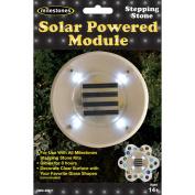 Stepping Stone Solar Powered Module