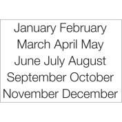 SRM Calendar Months Large Stickers-Sleek