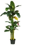 Nearly Natural 5226 6 ft. Triple Stalk Banana Silk Tree