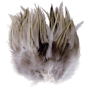 Touch of Nature 38139 Badger Saddle Hackle, 3 grammes