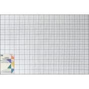 Gridded Plastic Template-30cm X46cm