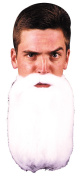 Costumes For All Occasions CB46 Moustache Beard White 36cm