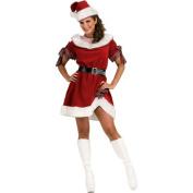 Ms. Santa Adult Standard
