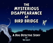 The Mysterious Disappearance at Bird Bridge