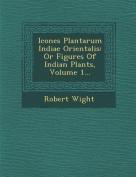 Icones Plantarum Indiae Orientalis