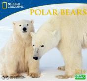 2014 Polar Bears