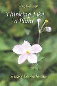 Thinking Like a Plant