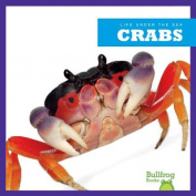 Life Under the Sea: Crabs