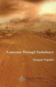 A Journey Through Turbulence