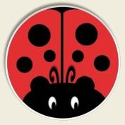 Ladybug Auto Coaster, Single Coaster for Your Car