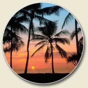 Palms, Sunset on the Beach Single Auto Coaster