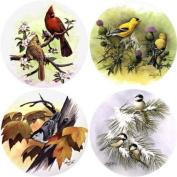 Songbirds Absorbent Coasters