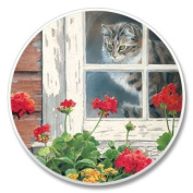 Cat in Window Stone Auto Car Cupholder Coaster