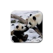 Panda bears Rubber Square Coaster set (4 pack) Great Gift Idea