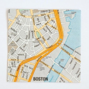 Design Ideas Mapkin, 5x5, Package of 20 Napkins, Boston MA