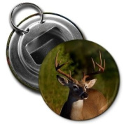 Beautiful DEER Buck with Antlers 5.7cm Button Style Bottle Opener with Key Ring