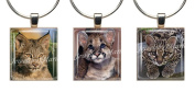 WILD CAT CUBS ~ Scrabble Tile Wine Glass Charms ~ Set #2 ~ PAIR & A SPARE ~ Set of 3 ~ Stemware Charms/Markers/Pendants