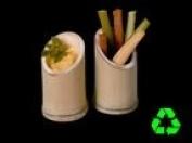 """Packnwood """"Asahi"""" Oblique Cut Bamboo Tube, 8.9cm Height"""