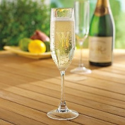 Indoor/Outdoor Champagne Flutes -Set of 4