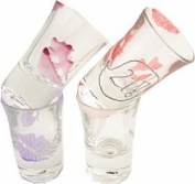 21st birthday lips shot glasses