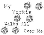My Yorkie Walks All Over Me Apron