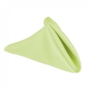 43.2cm . Polyester Napkins (1dz) Tea Green