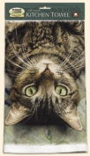 Fiddler's Elbow Perculiar Perspective Cat Kitchen Cotton Dish Towel