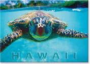 Honu (Hawaii Sea Turtle) by Kirk Lee Aeder - Hawaiian Art Collectible Refrigerator Magnet