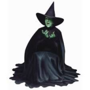 Paper House M-0216E 6-Pack The Wizard of Oz Die Cut Refrigerator Magnets, Wicked Witch