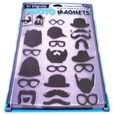 In Disguise Photo Magnets