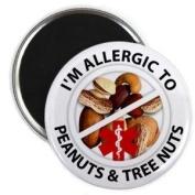ALLERGIC TO PEANUTS & TREE NUTS Medical Alert 5.7cm Fridge Magnet