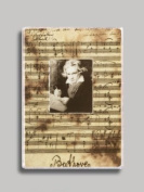 Betthoven on Music Notes Refrigerator Magnet