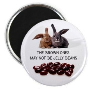 BROWN ONES AREN'T JELLY BEANS Easter Bunny 5.7cm Locker Fridge Magnet