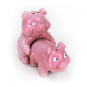 Big Mouth Toys Naughty Pigs Salt and Pepper Shaker Set