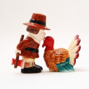 Turkey Ceramic Magnetic Salt and Pepper Shakers Collection Set