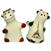 Souvenirs of France - Paris Eiffel Tower Salt and Pepper Shaker